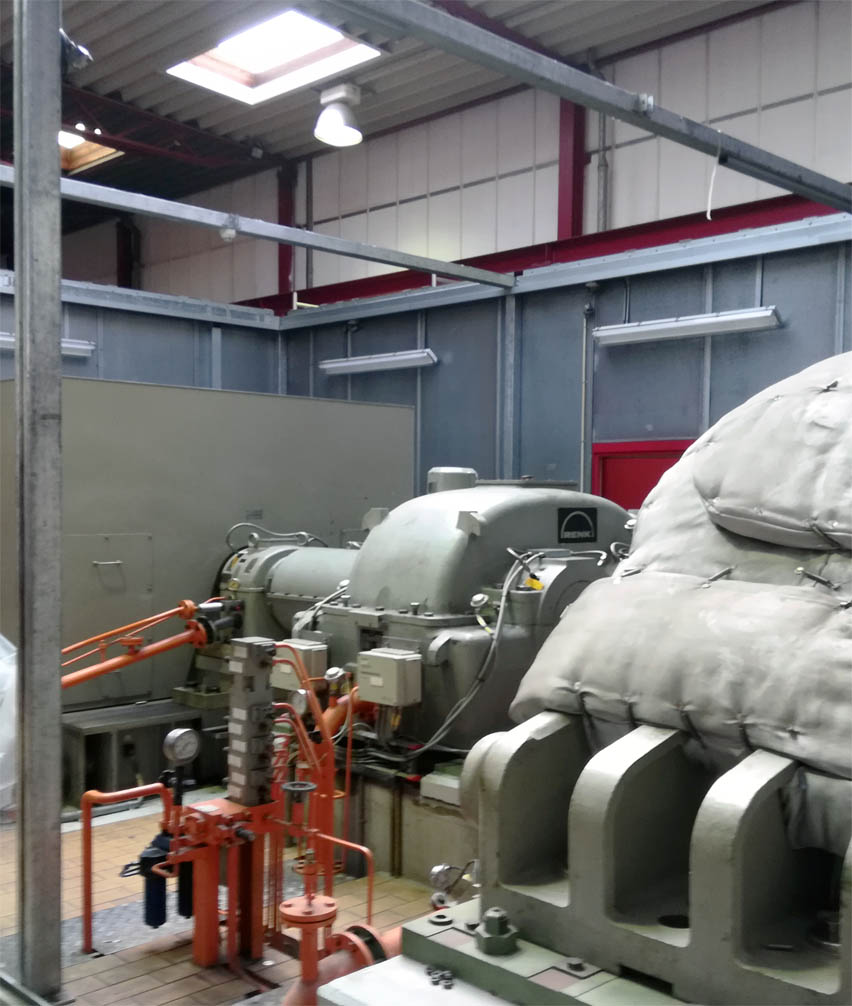 biomass plant generator Denmark